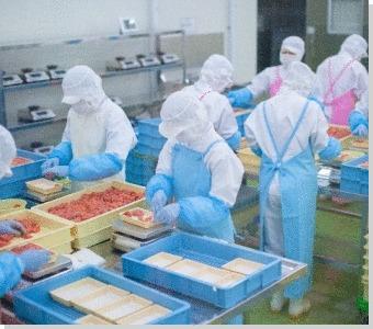 食品加工工場白衣の通販